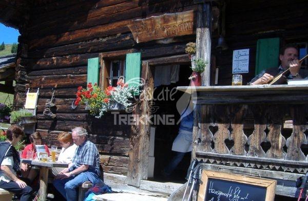 Zell Am See Trekking Schützingalm 5