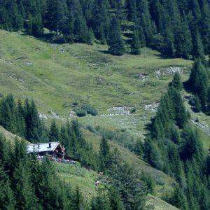 Zell am See: Schützingalm