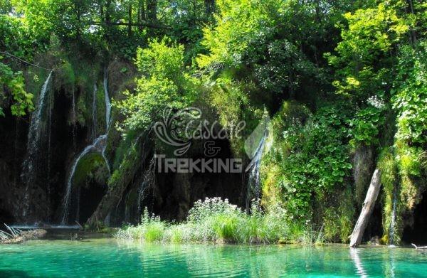 Rastovaca Parco Laghi Di Plitvice 5