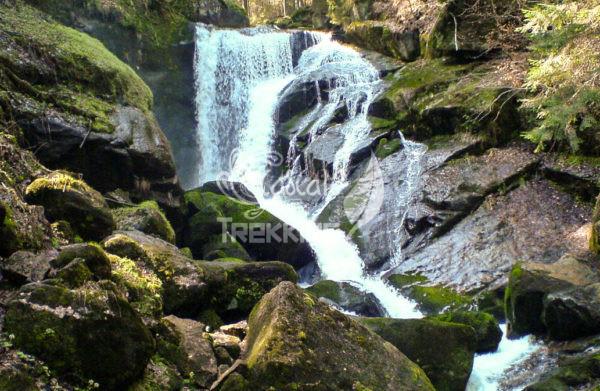 Triberg Cascate 1