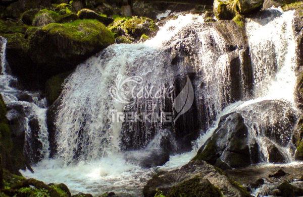 Triberg Cascate 3