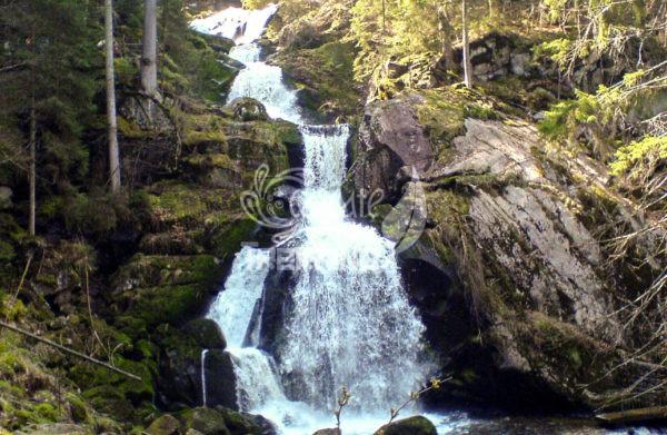 Triberg Cascate 5
