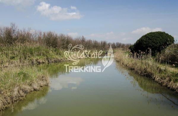 Codigoro Trekking Oasi Di Cannevie 2