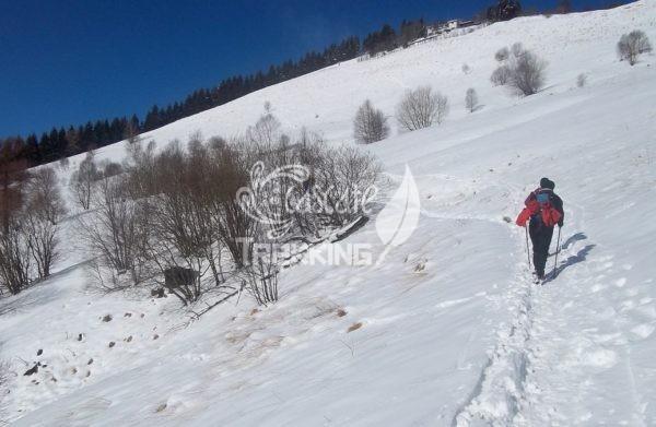Albavilla Trekking Monte Bolettone 4