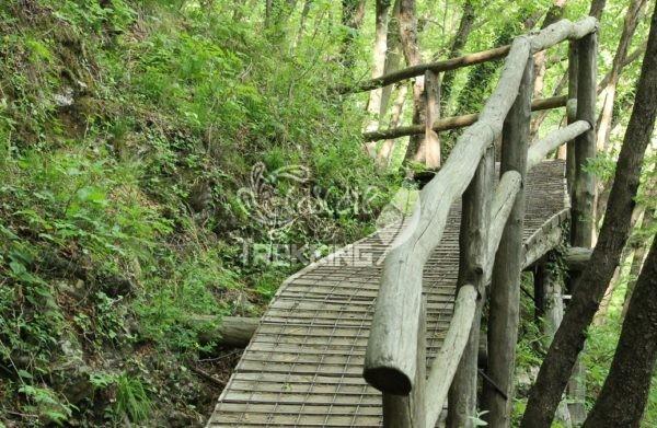 Canzo Trekking Lo Spirito Del Bosco 5