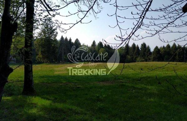 Trekking Brinzio Passo Valicc Monte Martica 1