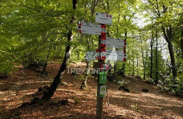 Trekking Brinzio Passo Valicc Monte Martica 3