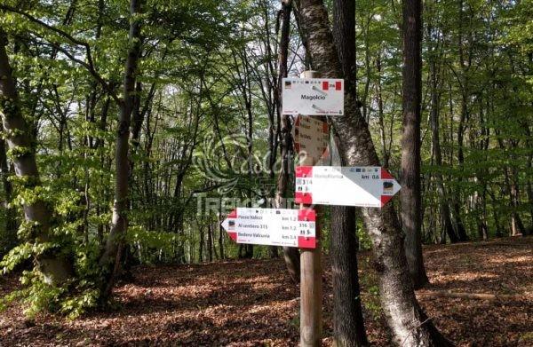 Trekking Brinzio Passo Valicc Monte Martica 5