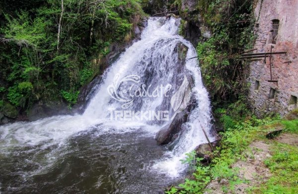Dumenza Cascata Del Rio Colmegnino 3