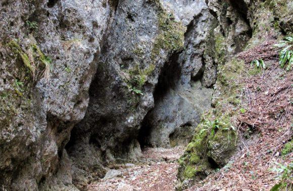 Induno Olona: Canyon della Valfredda