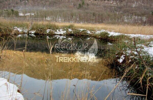 Valganna Trekking Torbiera Lago 6