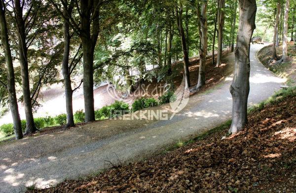 Pollone Trekking Parco Burcina 4