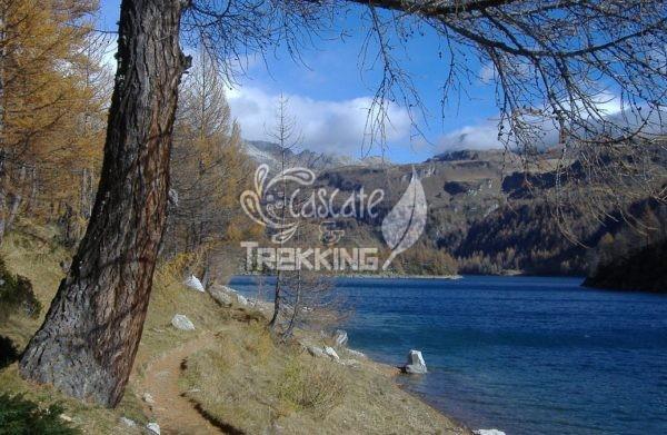 Baceno Trekking I Laghi Dell Alpe Devero 3