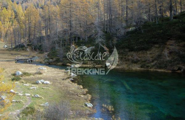 Baceno Trekking I Laghi Dell Alpe Devero 6