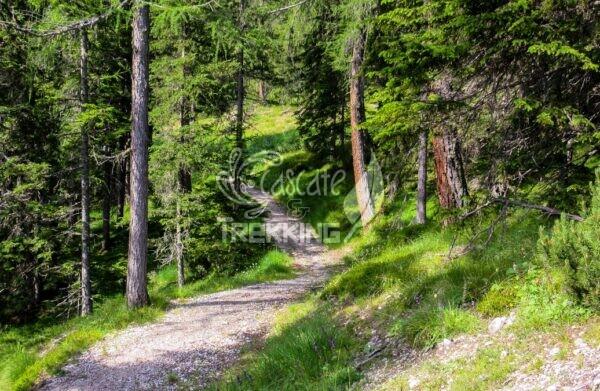 La Villa Trekking Rifugio Gardenacia 3