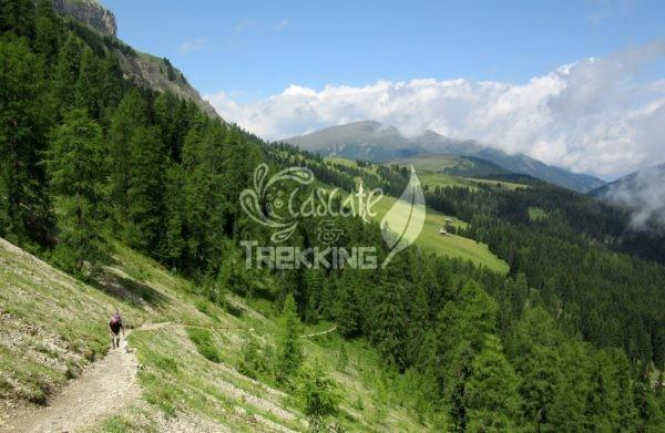 San Martino In Badia Trekking Malga Vaciara 2