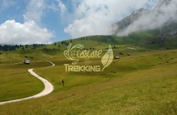 San Martino In Badia Trekking Malga Vaciara 4