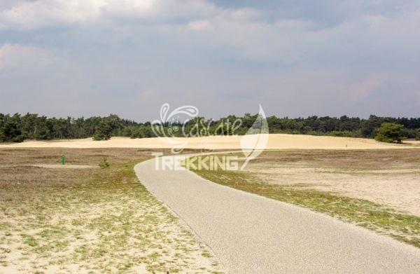 Ede Parco Nazionale De Hoge Veluwe 2