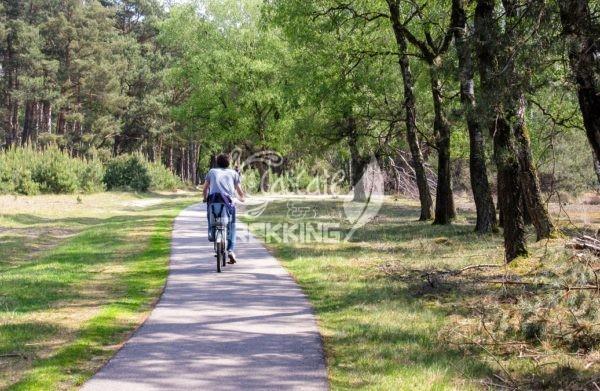 Ede Parco Nazionale De Hoge Veluwe 3