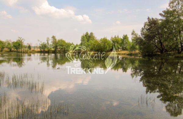 Ede Parco Nazionale De Hoge Veluwe 4