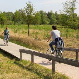 Ede: Parco Nazionale De Hoge Veluwe
