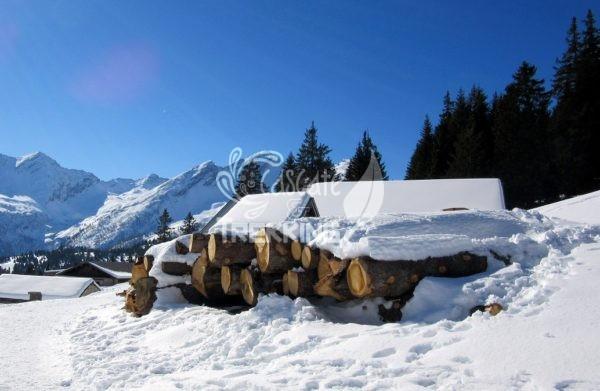 Trekking Mesocco Alpe Pian Doss 4