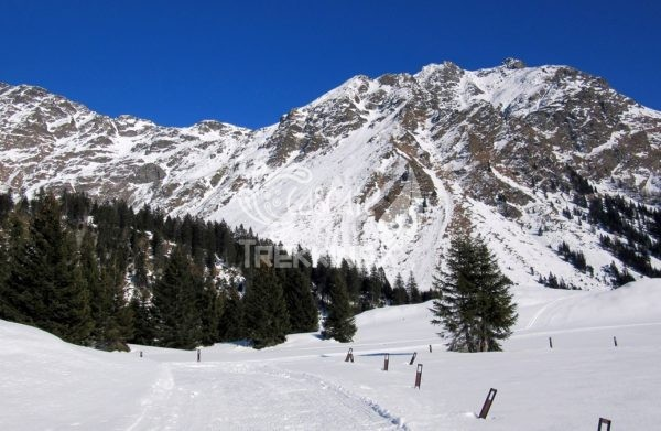 Trekking Mesocco Alpe Pian Doss 5