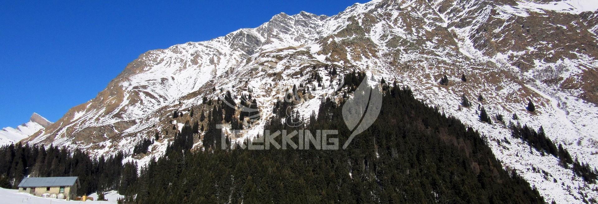 San Bernardino: Alpe Pian Doss