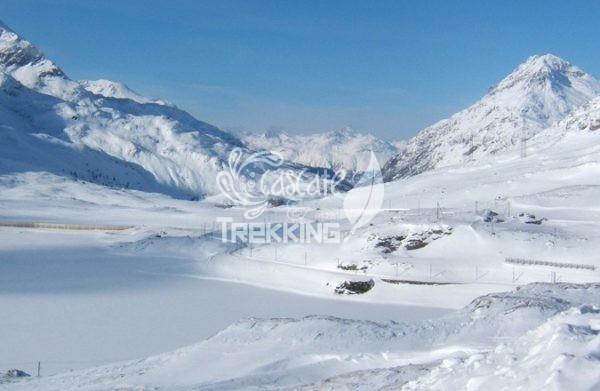 Pontresina Trekking Lago Bianco Bernina 1