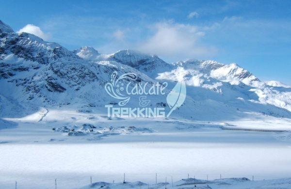 Pontresina Trekking Lago Bianco Bernina 4