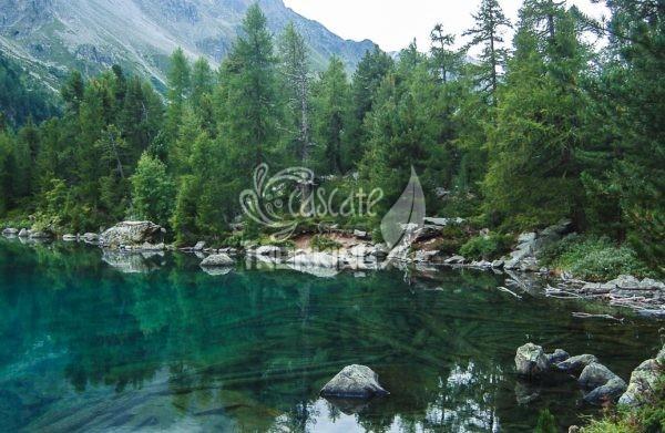 Poschiavo Trekking Lago Di Saoseo 4