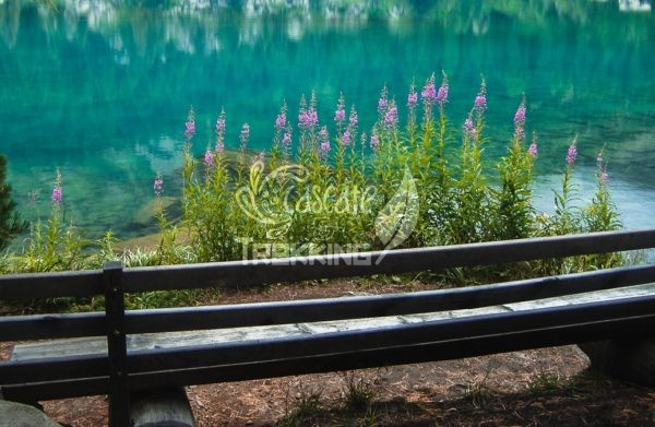 Poschiavo Trekking Lago Di Saoseo 5