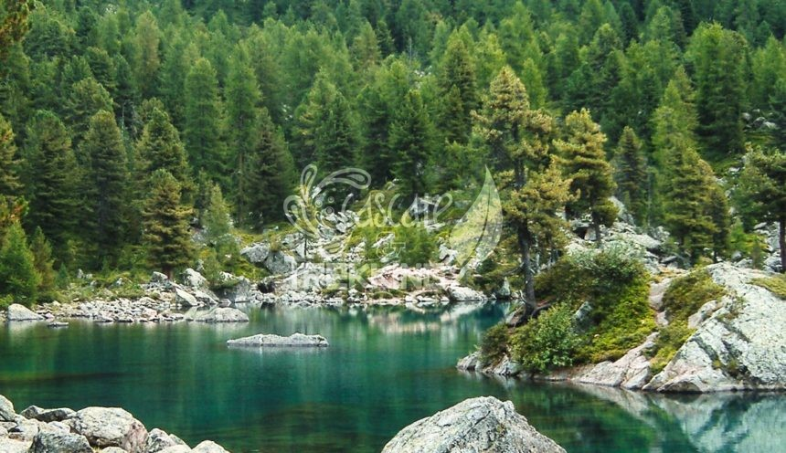 Poschiavo Trekking Lago Di Saoseo Copertina