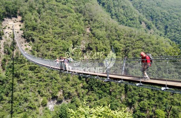 Bellinzona Monte Carasso Ponte Tibetano Carasc 2