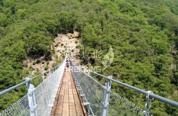 Bellinzona Monte Carasso Ponte Tibetano Carasc 3