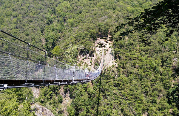 Bellinzona Monte Carasso Ponte Tibetano Carasc 4