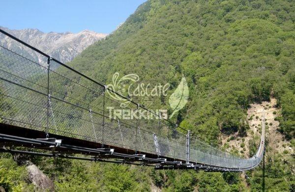 Bellinzona Monte Carasso Ponte Tibetano Carasc 5