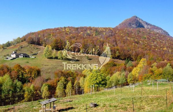 Centovalli Verdasio Trekking Monti Di Comino 1