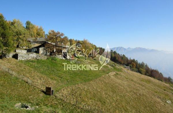 Centovalli Verdasio Trekking Monti Di Comino 5