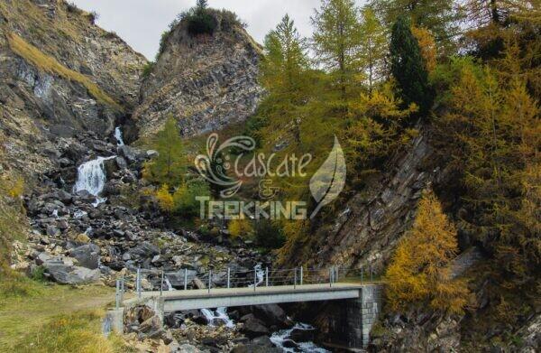 Quinto Trekking Anello Lago Ritom E Cadagno 4