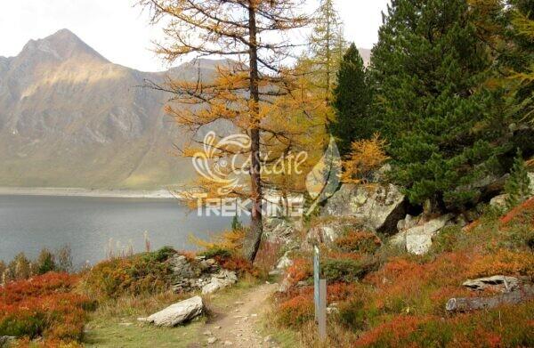 Quinto Trekking Anello Lago Ritom E Cadagno 6