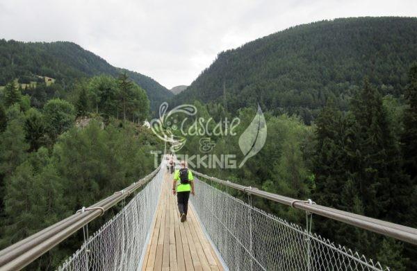 Ernen Ponte Sospeso Goms Bridge 3