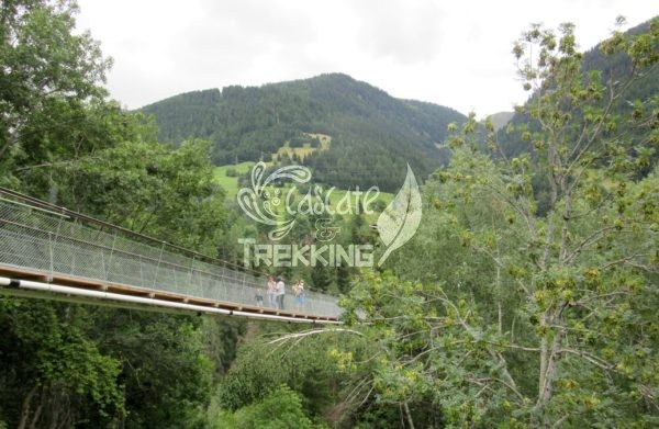 Ernen Ponte Sospeso Goms Bridge 4